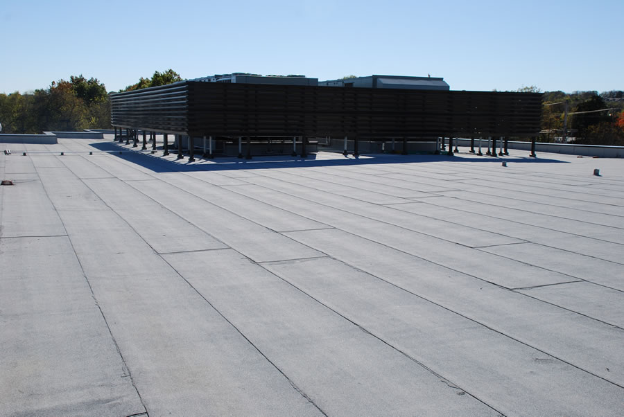 Torch Down Modified Cap Sheet Roof